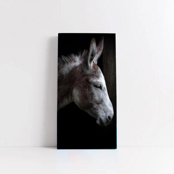 quadro in tela verticale rapporto 1:2 con cornice sottile o spessa